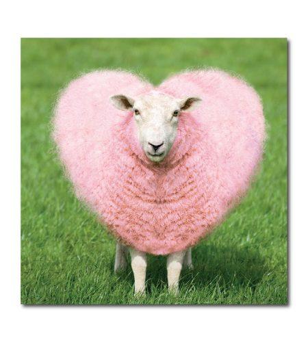 Heart Sheep Card