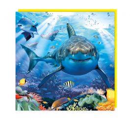Shark 3D card